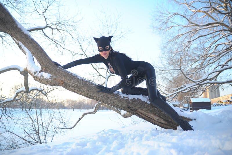 catwoman στοκ εικόνες
