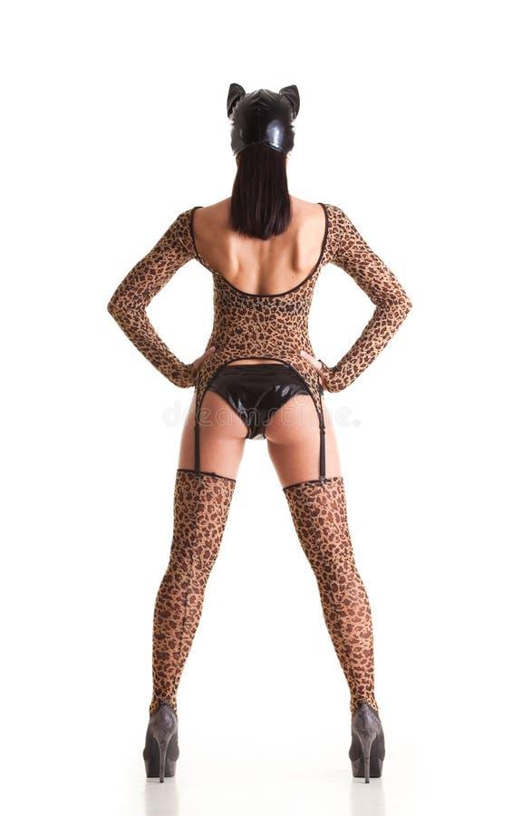 catwoman seksowny obrazy stock