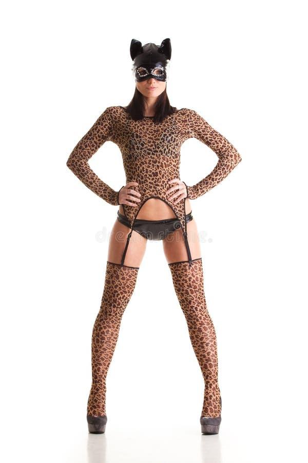 catwoman sexigt royaltyfri bild
