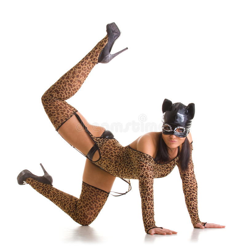 catwoman target10_0_ obrazy stock