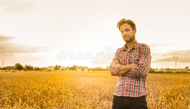 Caucasian farmer in plaid shirt and wheat field - agriculture. Forty years old caucasian farmer in plaid shirt standing proud in front of wheat field stock photo