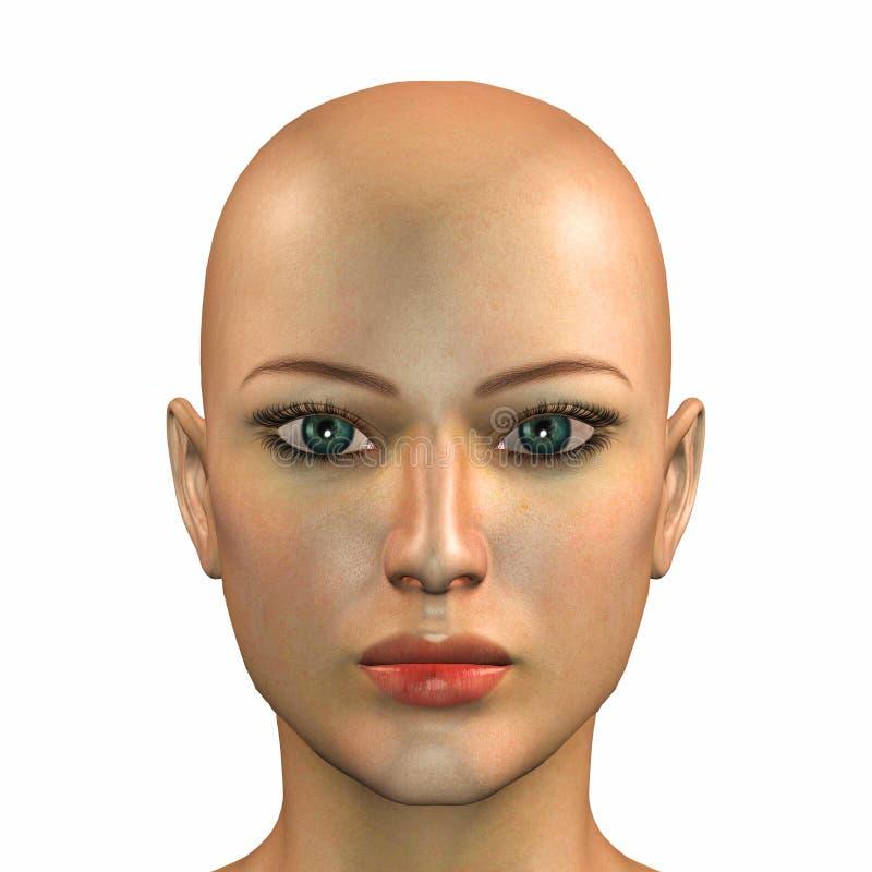 caucasian framsidakvinna royaltyfri illustrationer