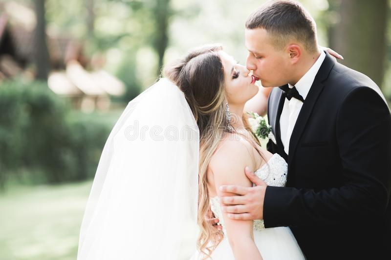 Caucasian happy romantic young couple celebrating their marriage. Outdoor royalty free stock photos