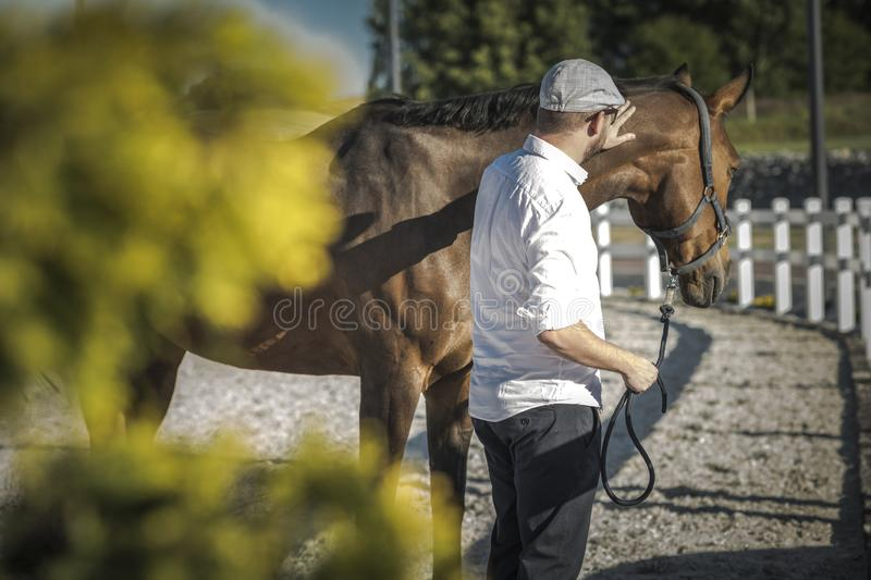 Caucasian Horse Owner royalty free stock photo