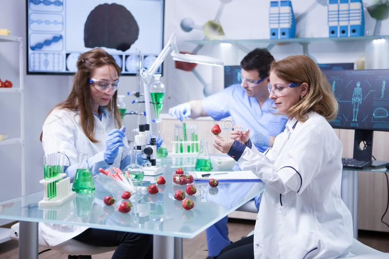 Caucasian kvinna med skyddsexponeringsglas som gör det vetenskapliga provet på jordgubbar royaltyfria foton