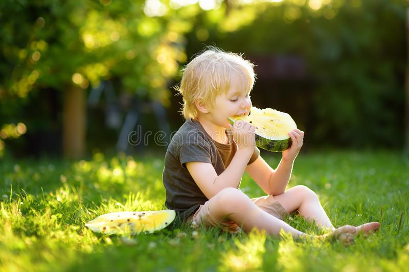 Caucasian little boy with blond hairs eating yellow watermelon on backyard. Seasonal fruits and vegetables for kids stock photos