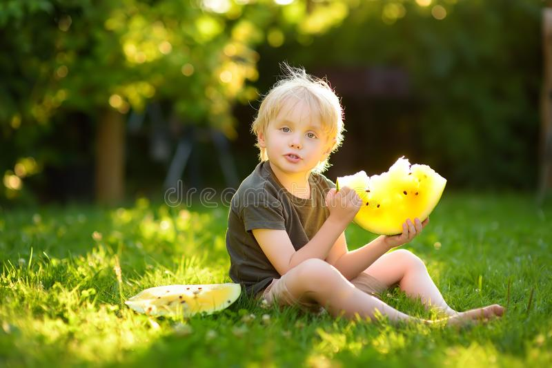 Caucasian little boy with blond hairs eating yellow watermelon on backyard. Seasonal fruits and vegetables for kids royalty free stock image