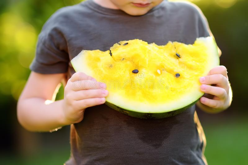 Caucasian little boy eating yellow watermelon outdoors. Seasonal fruits and vegetables for kids stock photo