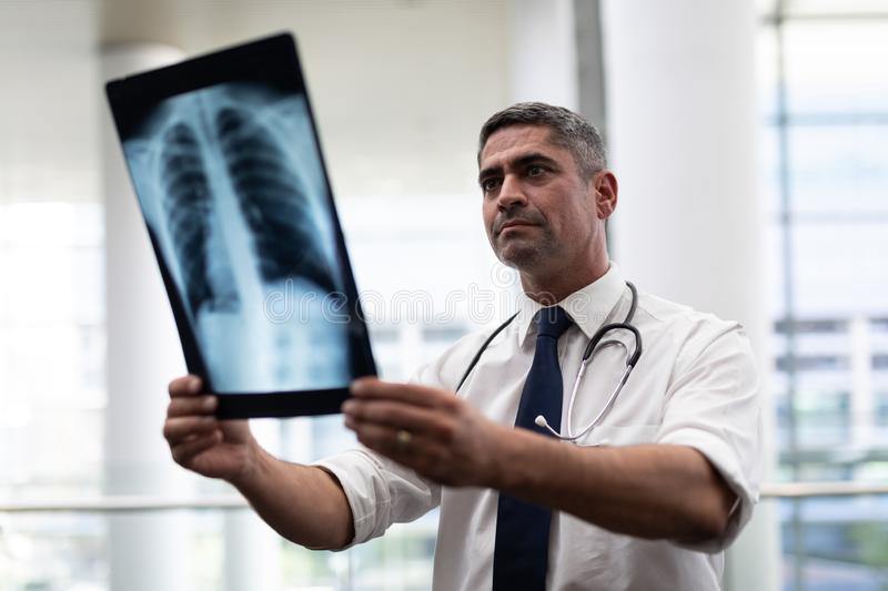 Caucasian male doctor looking at x-ray in clinic stock photography
