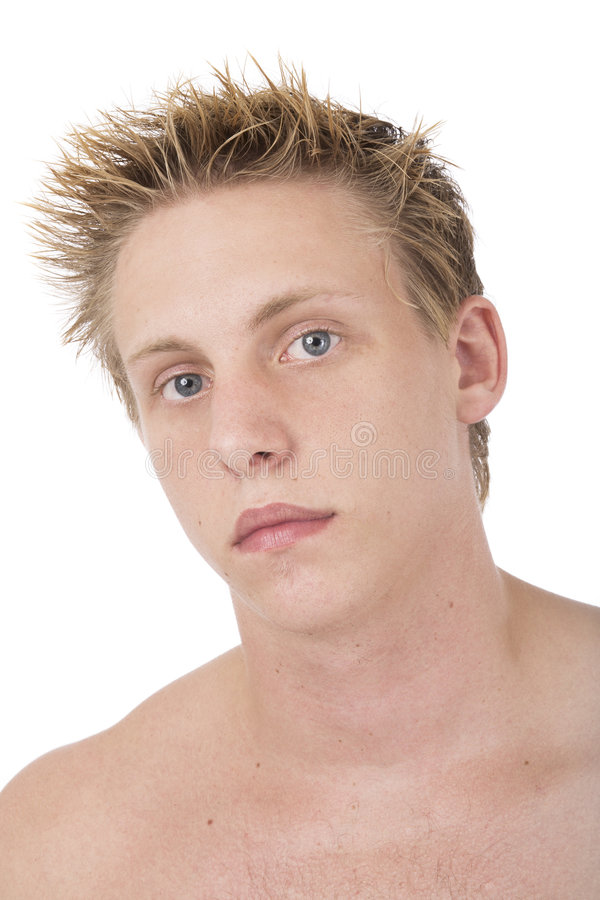 Download Caucasian male portrait 2 stock image. Image of male, handsome - 650425