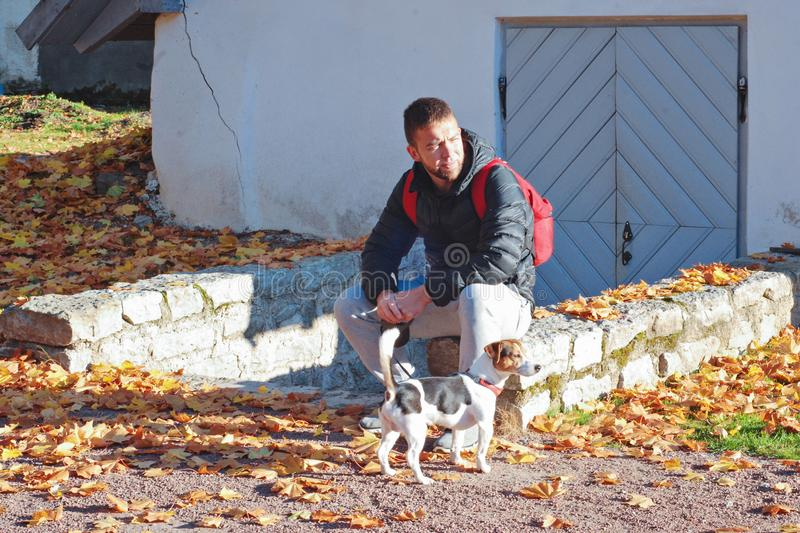 Caucasian man walking with jack russell terrier dog in autumnal park. Bearded caucasian man walking with jack russell terrier dog in autumnal park. Beautiful royalty free stock images