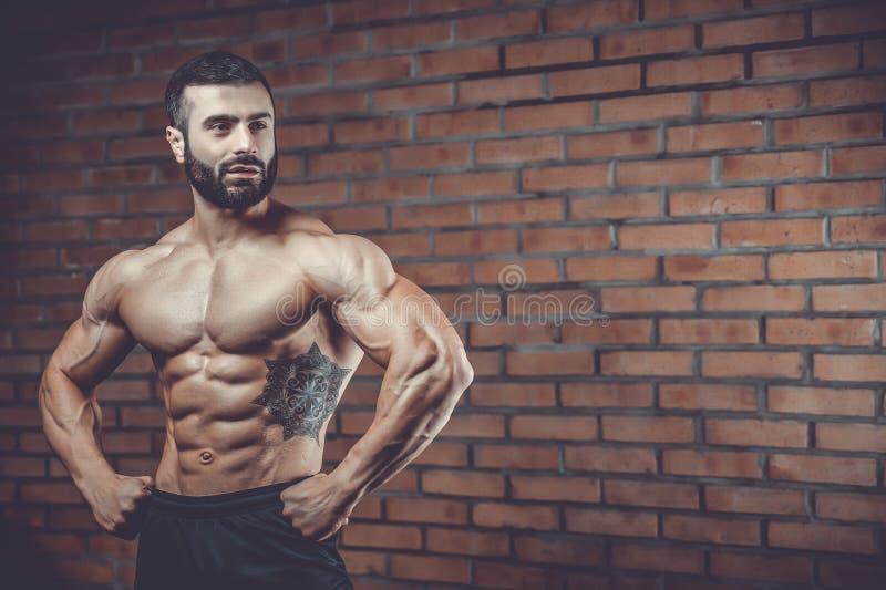 Caucasian sexig konditionmodell i idrottshallslut upp abs arkivbilder