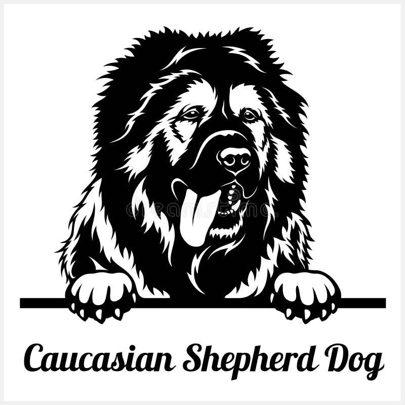 Free Caucasian Shepherd Dog - Peeking Dogs - Breed Face Head Isolated On White Stock Photos - 191371173
