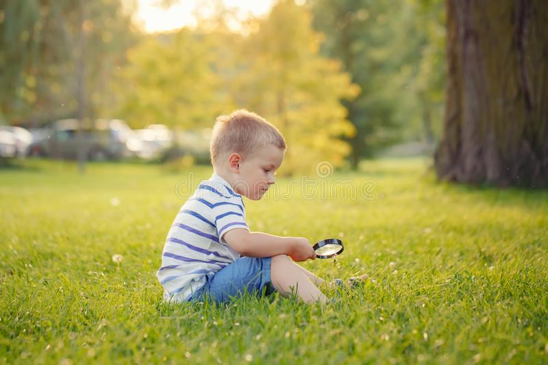 Caucasian toddler boy looking at plants flower grass in park through magnifying glass stock photo