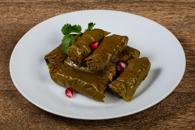 Caucasian traditional Dolma. Minced meat in grape leaves stock photography