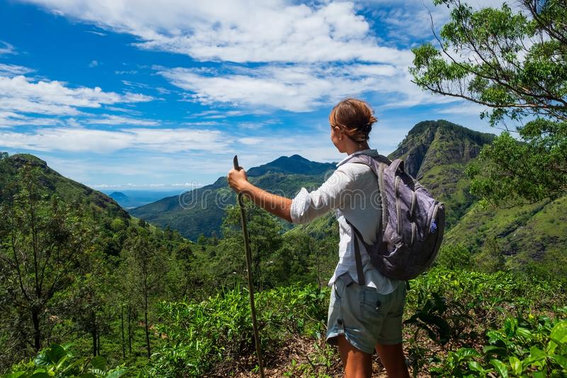 Caucasian woman standing between tea bushes and looking on mountains royalty free stock images