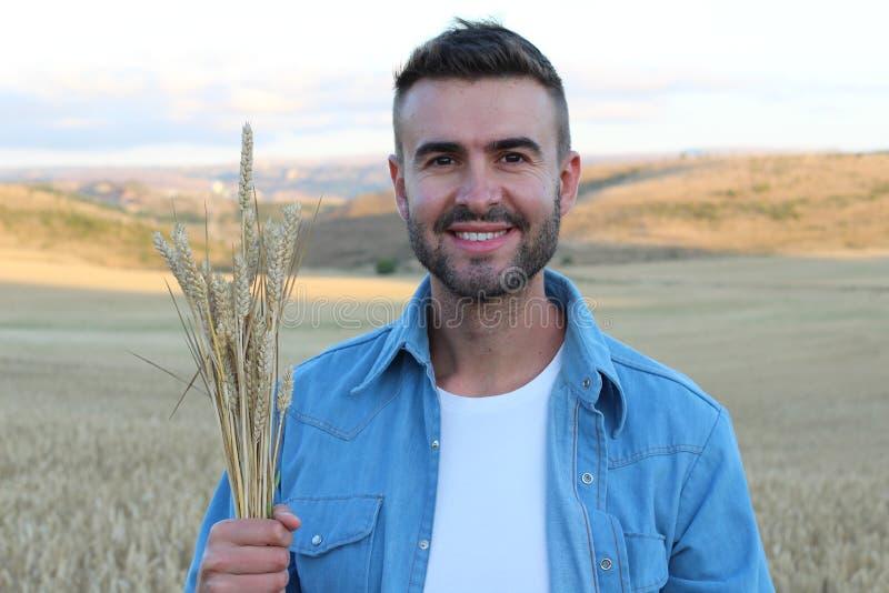 Caucasien de sourire heureux trente années de producteur se tenant fier devant ses champs tenant des usines de blé photos stock