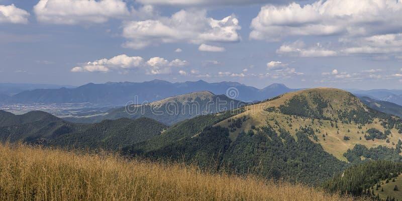 caucasus dombay gór panoramy narty skłonu widok zdjęcie royalty free