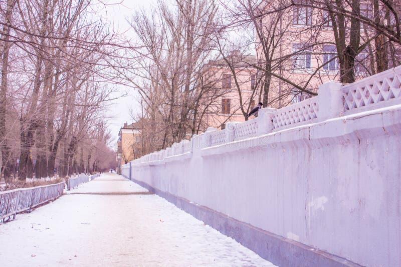 caucasus krajobrazu dombai charakteru lato obrazy royalty free