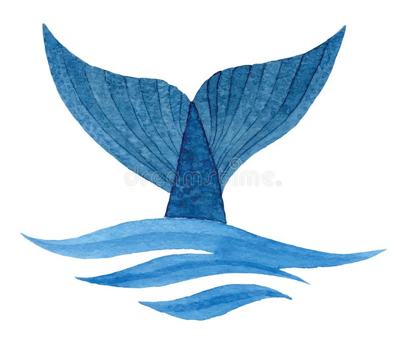 Cauda da baleia ilustração royalty free