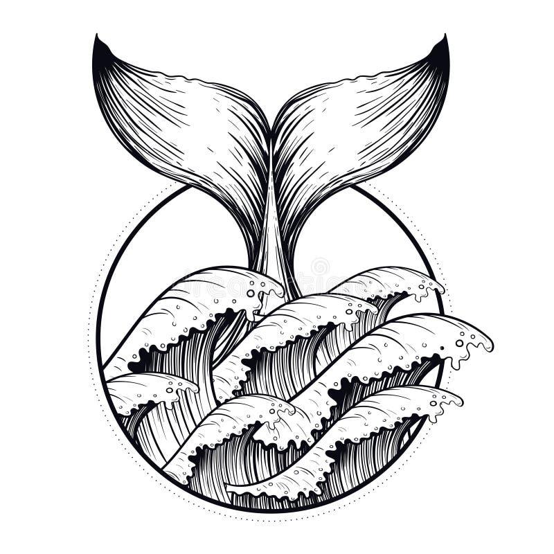A cauda da baleia no mar acena, tatuagem do blackwork do boho Linha arte d do oceano ilustração do vetor