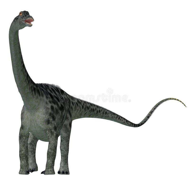 Cauda do dinossauro do Diplodocus ilustração do vetor