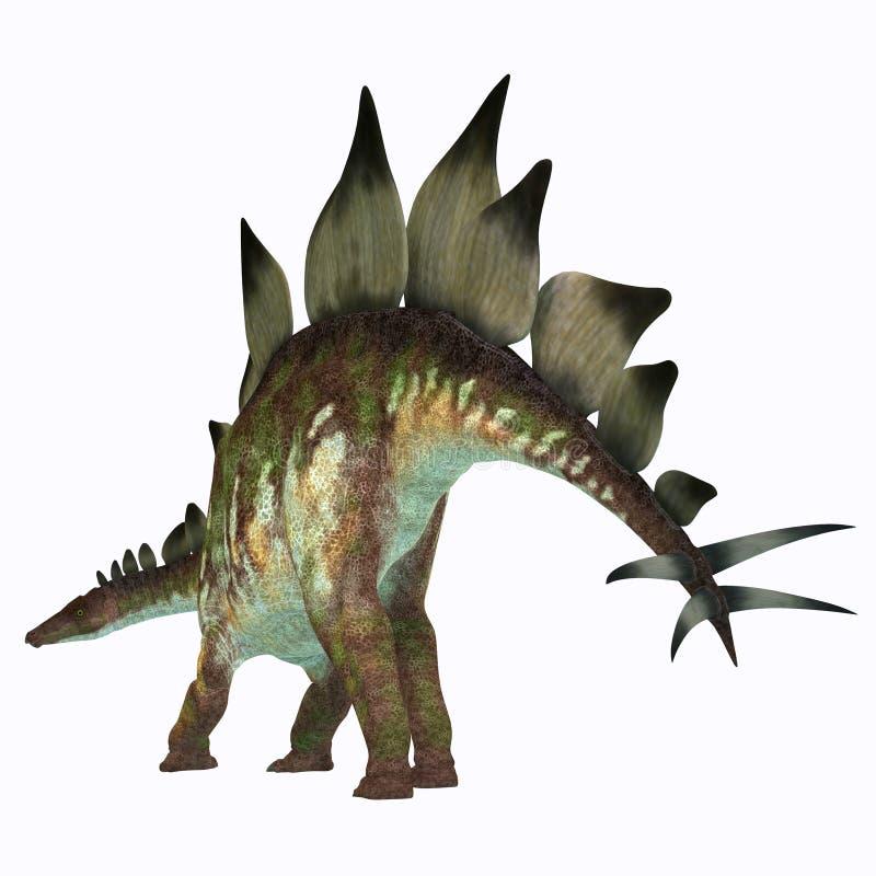 Cauda do dinossauro do Stegosaurus ilustração stock