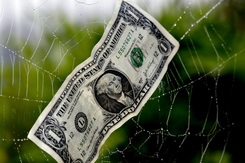 Caught In A Financial Web royalty free stock images
