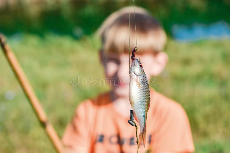 Caught fish on a fishing rod hanging on a hook, close-up stock photo