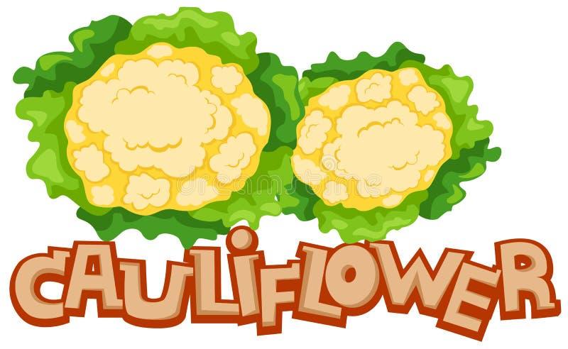 Cauliflower. Illustration of isolated letter of cauliflower on white background vector illustration