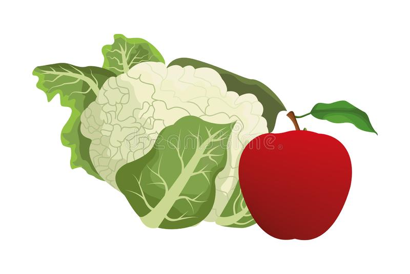 Cauliflower and apple. Icon cartoon isolated vector illustration graphic design royalty free illustration