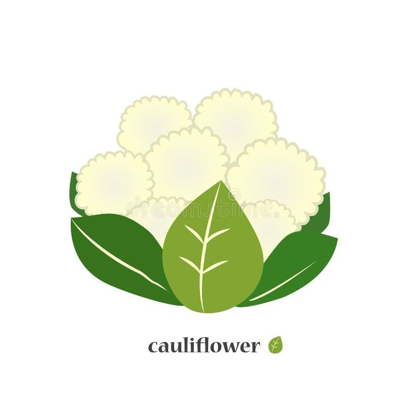 Cauliflower. Cabbage icon closeup. vector illustration