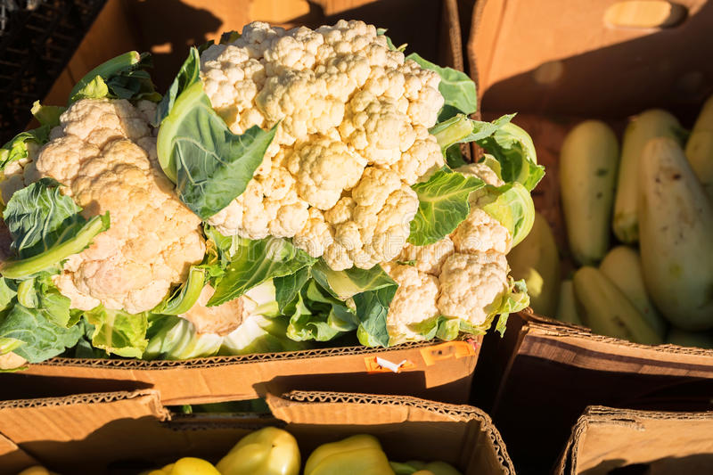 Cauliflower close-up in box on market stock photo