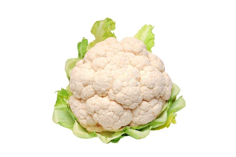 Cauliflower isolated over a white background stock image
