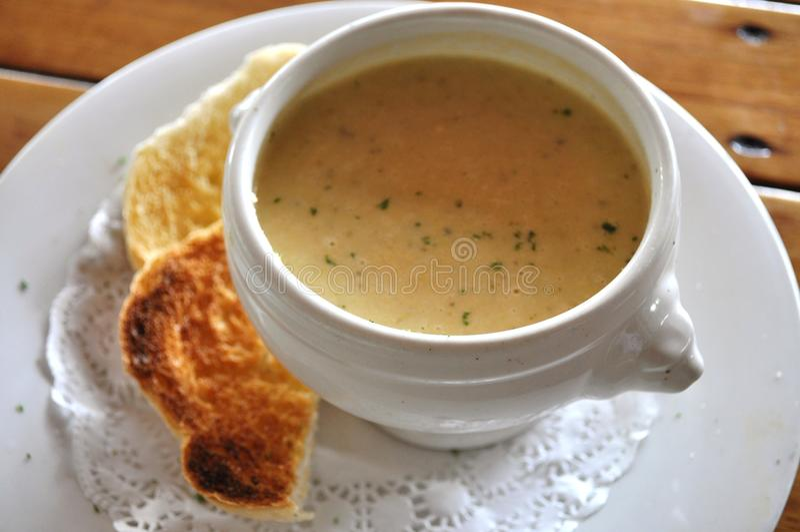 Cauliflower Soup royalty free stock image