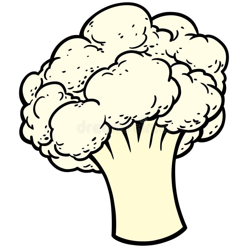 Cauliflower. Vector illustration of a piece of Cauliflower stock illustration