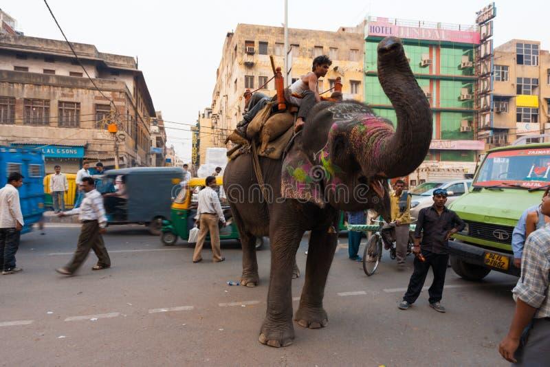 Causa céntrica la India del elefante del tráfico de Delhi foto de archivo