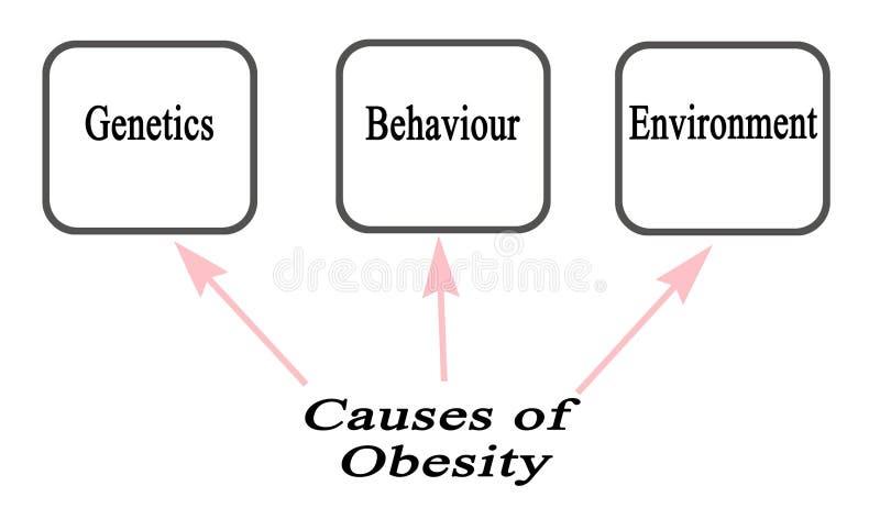 Causa três da obesidade ilustração do vetor