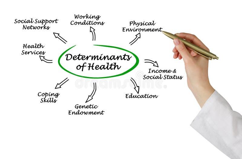 Causas determinantes da saúde fotos de stock royalty free