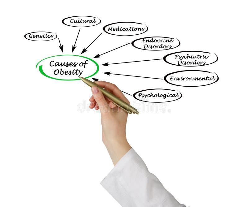 Cause di obesità fotografia stock libera da diritti