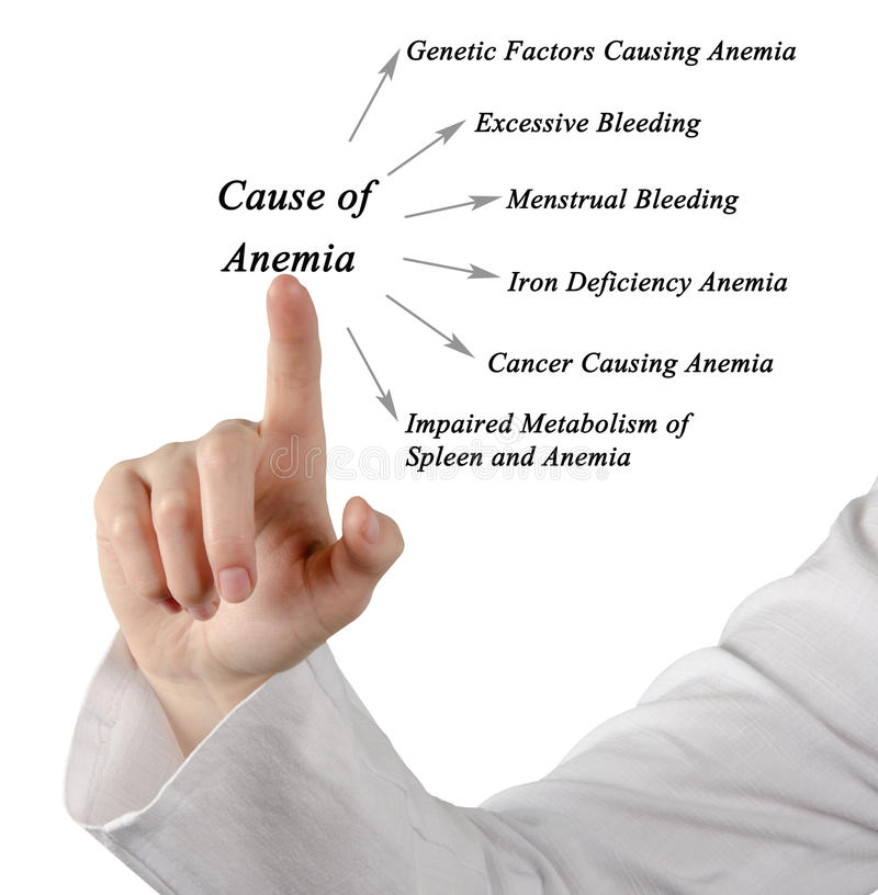 Causes of Anemia. Presenting diagram of Causes of Anemia royalty free stock image