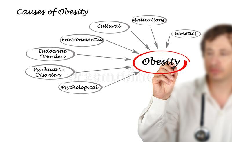 Causes of Obesity. Man presenting Causes of Obesity stock photos
