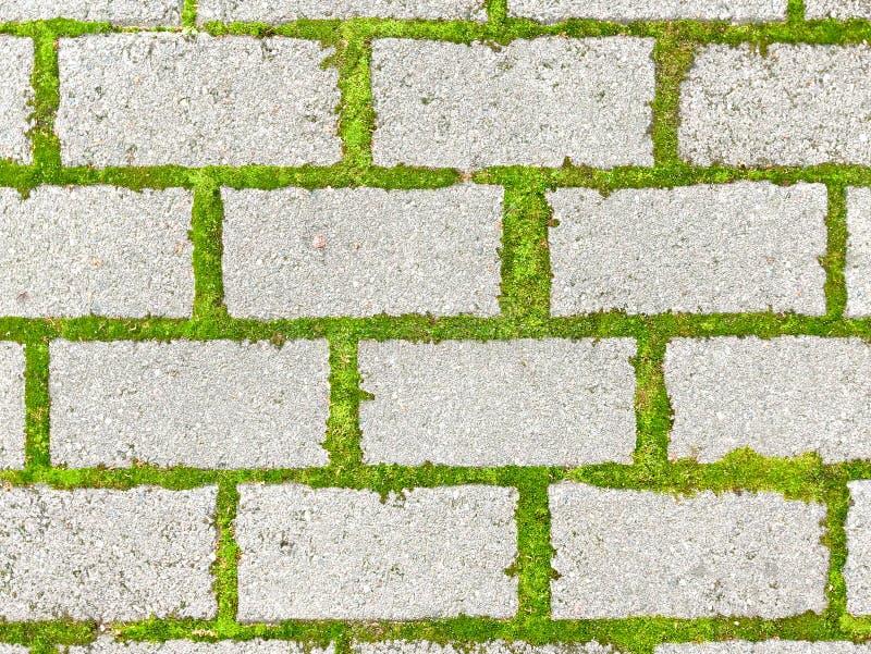 Download Causeway stock photo. Image of floor, block, geometry - 10553506