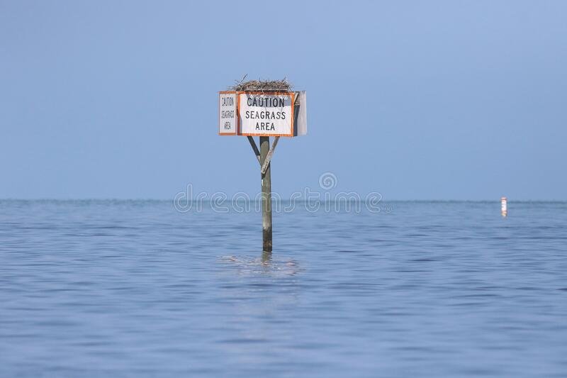 Caution Seagrass Area Sign royalty free stock photos