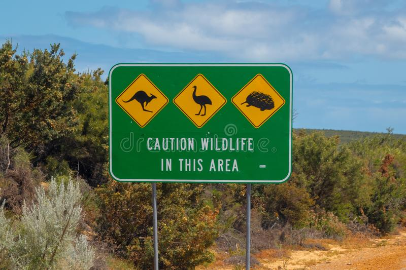 Caution wildlife sign in Australia next to the road - danger of kangaroos emus and mammals stock images