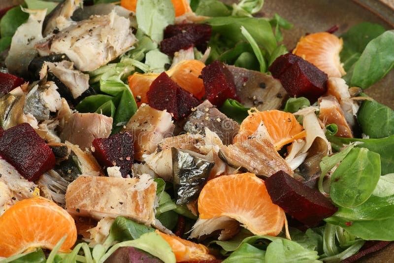Cavala e salada misturada fotografia de stock royalty free