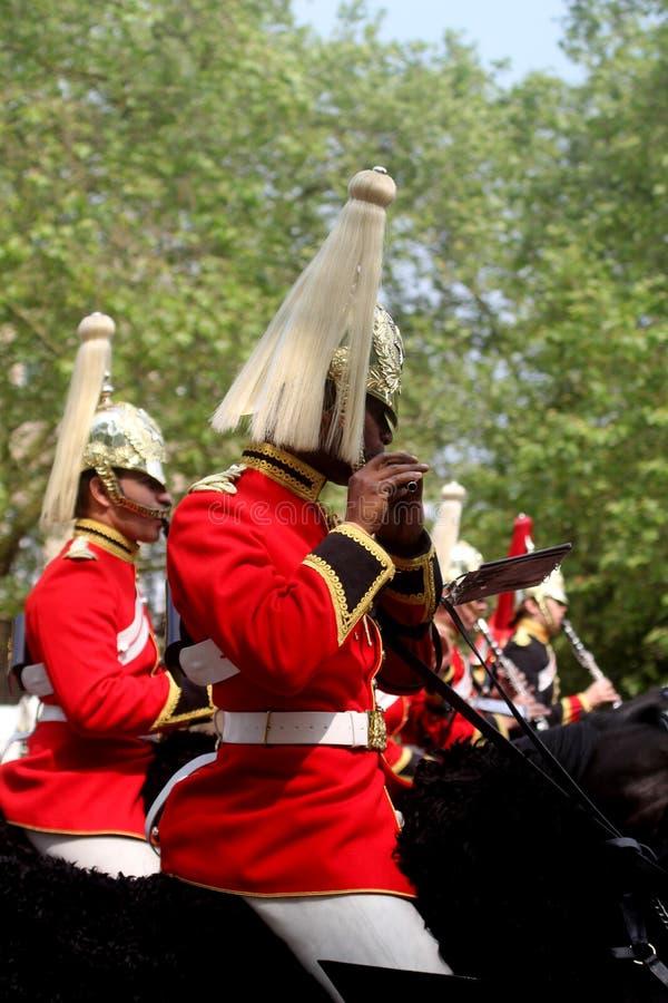 A cavalaria do agregado familiar une-se imagem de stock royalty free