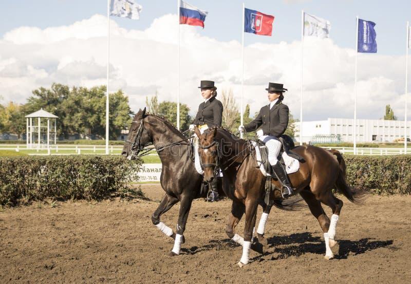 Cavaleiro bonito de ROSTOV-ON-DON, RÚSSIA 22 de setembro - em um cavalo imagem de stock