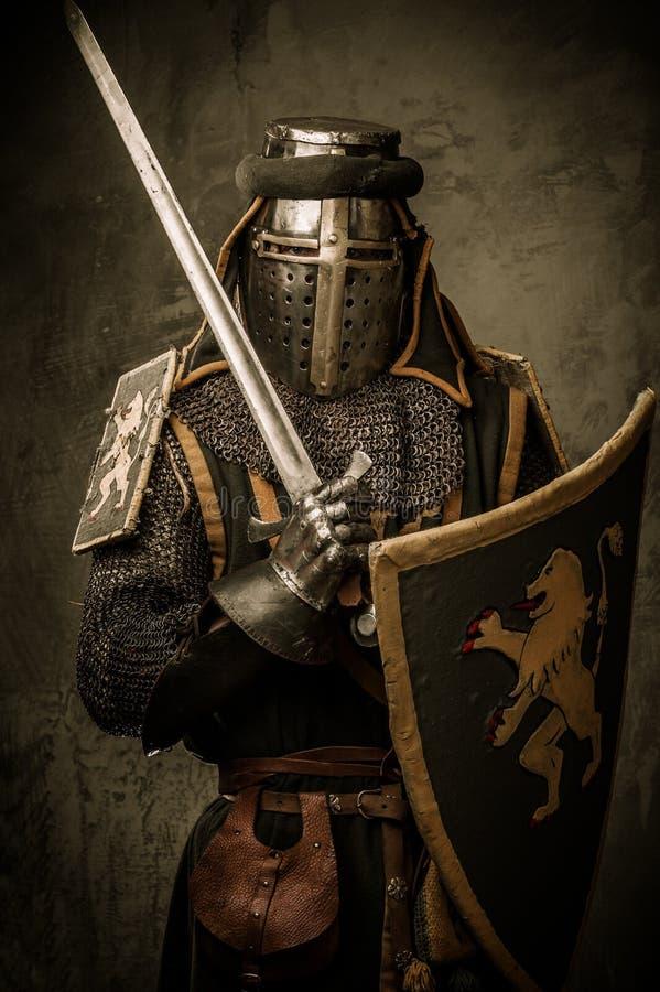 Cavaleiro com espada e protetor imagem de stock