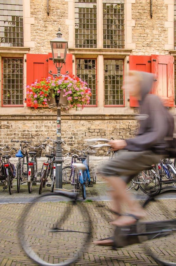 Cavaleiro da bicicleta pela câmara municipal da louça de Delft foto de stock royalty free